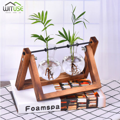 FLOWER POT BULB GLASS VASE WOODEN BASE FOR HYDROPONIC PLANTS HOME DESKTOP DECORS