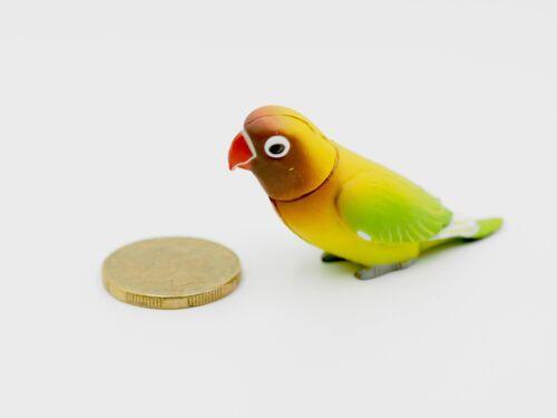 Dollhouse Miniature Bird Green Parrot Budgerigar Budgie