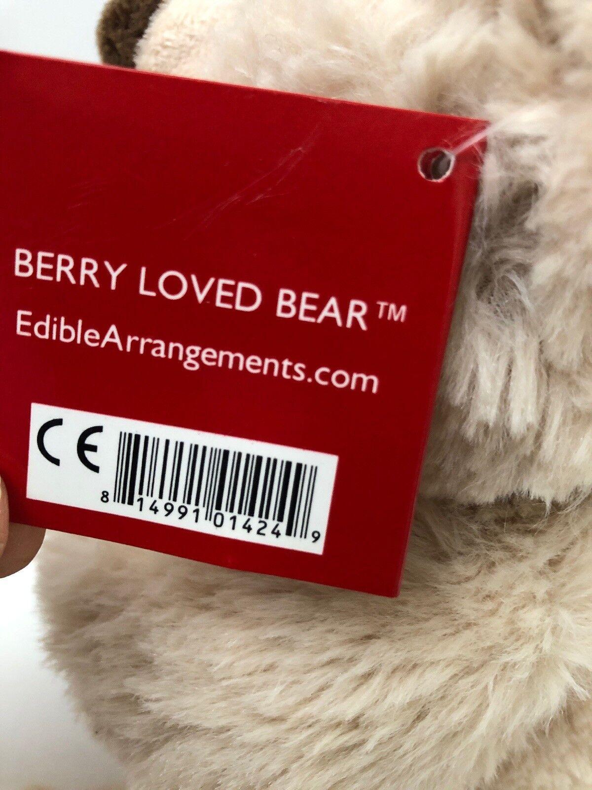 Edible Arrangements Sitting Teddy Berry Loved Bear Teddy Sitting Plush Toy 9