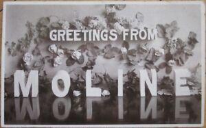1920-Large-Letter-Realphoto-Postcard-MOLINE-Illinois-IL-Ill