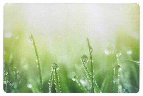Schreibtischunterlage Gras mit Tau Tropfen grün 40x60 cm abwischbar Wiese 2.Wahl