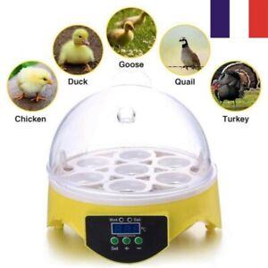Mini-Volaille-Incubateur-Couveuse-Temperature-Controle-Pour-Poulet-Oiseau-Oeuf