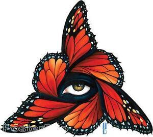 Rimada-Monarch-STICKER-Decal-Gustavo-Butterfly-Wings-Center-Eye-G41