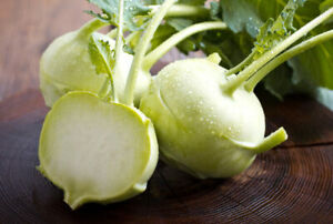 Early-White-Vienna-Kohlrabi-Seeds-NON-GMO-Variety-Sizes-FREE-SHIPPING