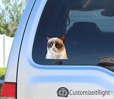 Grumpy cat sticker decal breed meme family stick toy video american car laptop