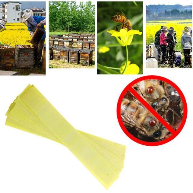 20pcs Mite Strip Fluvalinate Strip Bee Mite Varroa Killer Beekeeping Acaricide