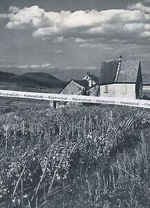 Zellenberg - Elsass - Alsace - um 1960 - selten!   O 1-15