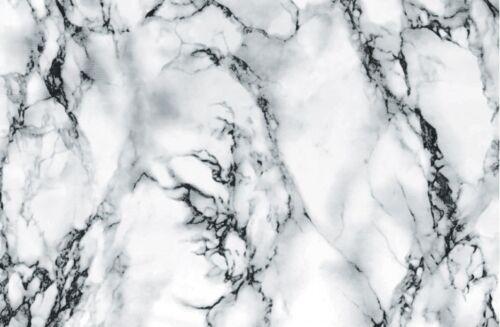 SNIIA Arrosoir en Plastique en Acier Inoxydable /À Long Bec 1000ML avec /Échelle Et Flacon Pulv/érisateur De 360ML pour Arrosage en Pot De Fleurs Dint/érieur