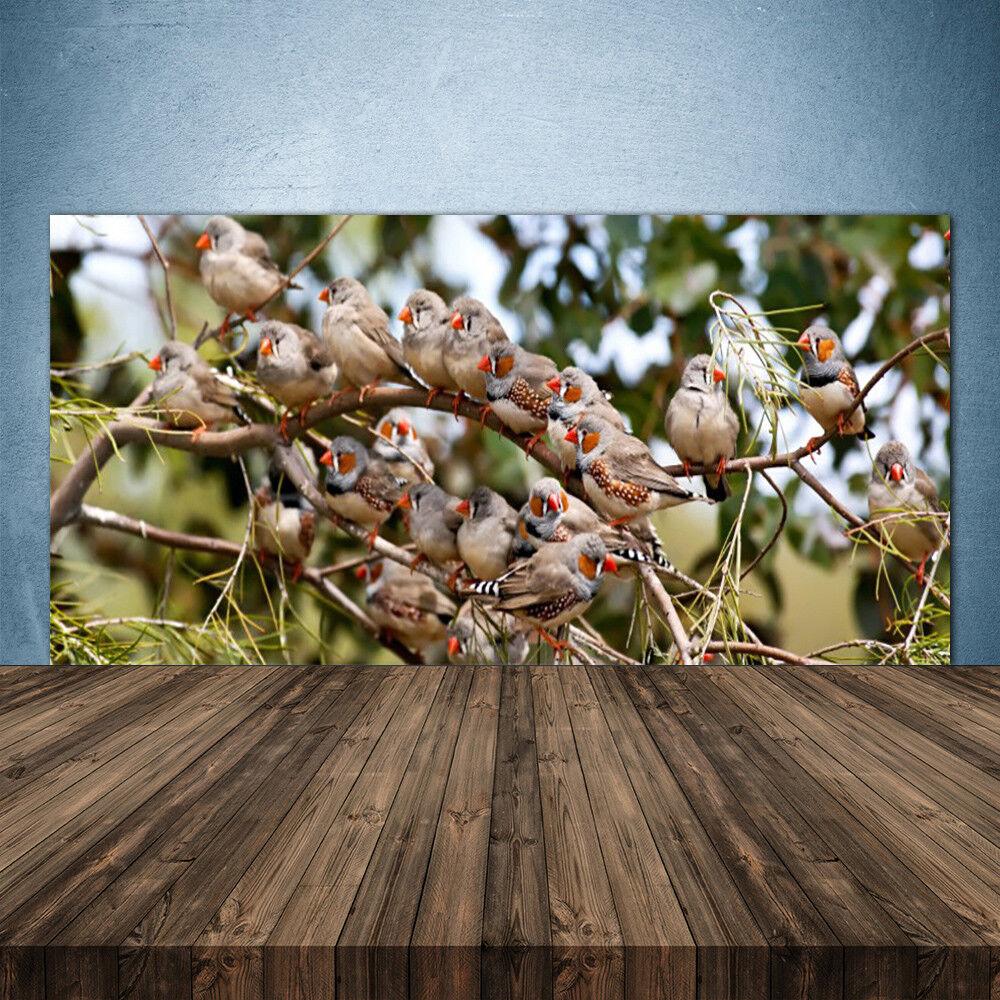 Crédence de cuisine en verre Panneau 140x70 Animaux Oiseaux