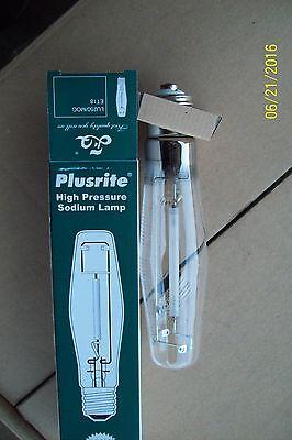 Plusrite LU250//MOG 250W high pressure sodium bulb