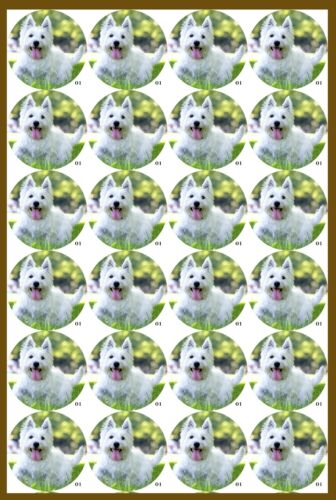 icing sheet.1080 Edible Cupcake Toppers x20 Westie Dog Topper-wafer sheet