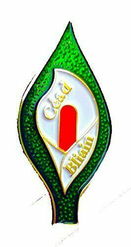 Large Easter Lily Céad Bliain 100 Years Pin Badge Irish Republican 1916 Rising