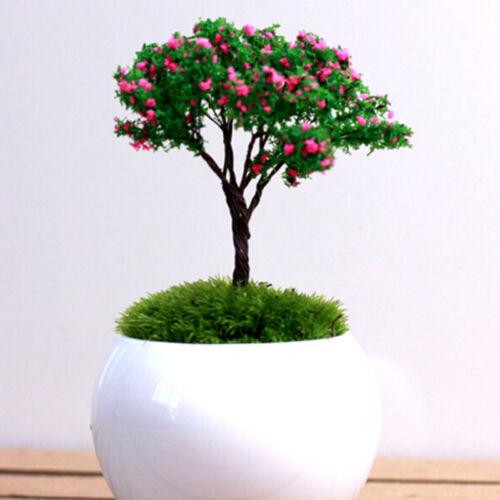 Fairy Garden Puppenhaus ZJP  HV 6X Miniatur Baum DIY Ornament Dekor Handwerk F