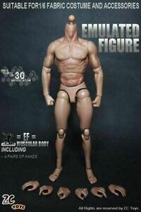 """ZC Toys 1/6 12"""" Nude Male Muscular Man Figure Body Model Fit HT Headsculpt"""