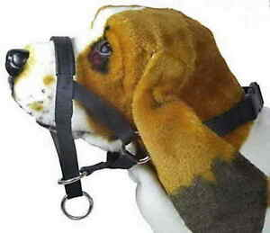 Halti-Style-Padded-Head-Collar-Stops-Dog-Pulling-Halter-Training-Nose-Reigns
