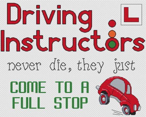 "10/""x8/"",25x20cm,kit//chart Driving Instructors Full Stop Cross Stitch Design"