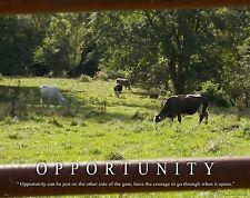 Cattle Cow Rancher Motivational Poster Art Rodeo Supplies Cowboy Farming MVP392