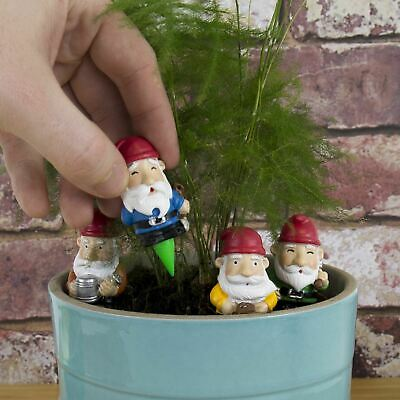 Giardinaggio Fiori.Vaso Da Fiori Giardino Gnomi Mini Giardinaggio Confezione Da 4