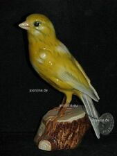 +# A010181_02 Goebel Archiv Muster Vogel Bird Kanarienvogel Canary 38-510 Plombe