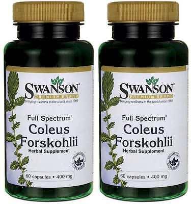 2X Coleus Forskohlii - 400mg x 60 ( 120 ) Capsules 24HR DISPATCH