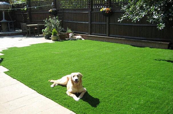 3x5 Premium Synthetic Turf Artificial Grass Fake Lawn For Patio Dog Run  Garden