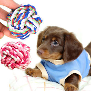 Dog-Teddy-Chew-Knot-Toys-Pet-Puppy-Teeth-Bear-Braided-Training-Tough-Strong-Rope