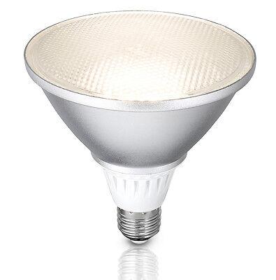 Brilliant Lighting Outdoor LED Light Globe PAR38 E27 13w Spot Cool White IP66