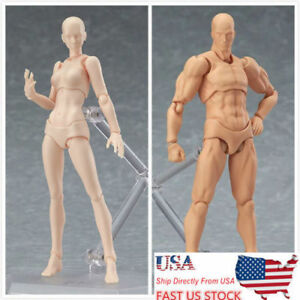 Figma Nude Male Action Figure Muscular Man Body Youth Ver 2.0 Movable Toys Doll