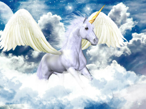-Pferde Wolken Himmel Pferd Ponny Kinder Bild VLIES Fototapete-PEGASUS- 2581V