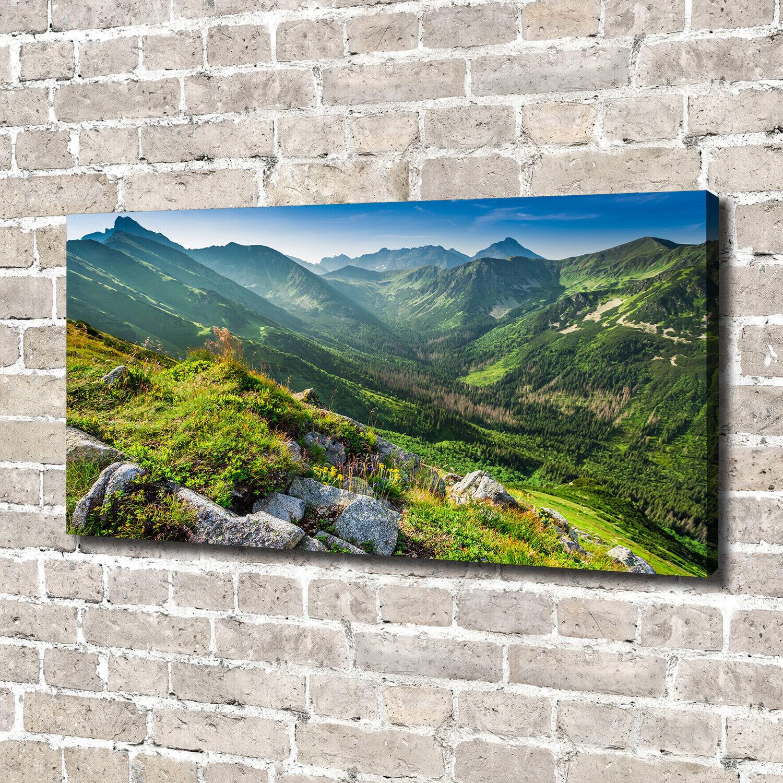 Leinwandbild Kunst-Druck 140x70 Bilder Landschaften Berge Tatra