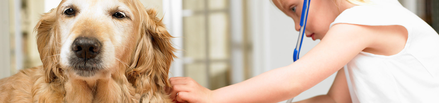 The Best in Pet Care