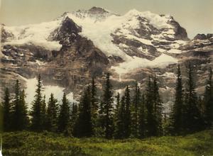 Berner-Oberland-Wengernalp-mit-Jungfrau-PZ-vintage-photochromie-photochro