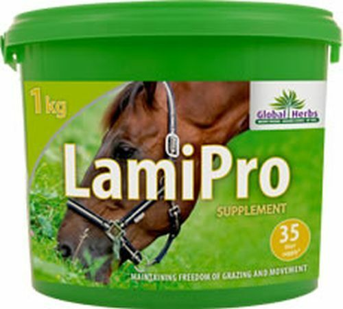 GLOBAL HERBS LAMIPRO POWDER  - 1 KG - GLB0420
