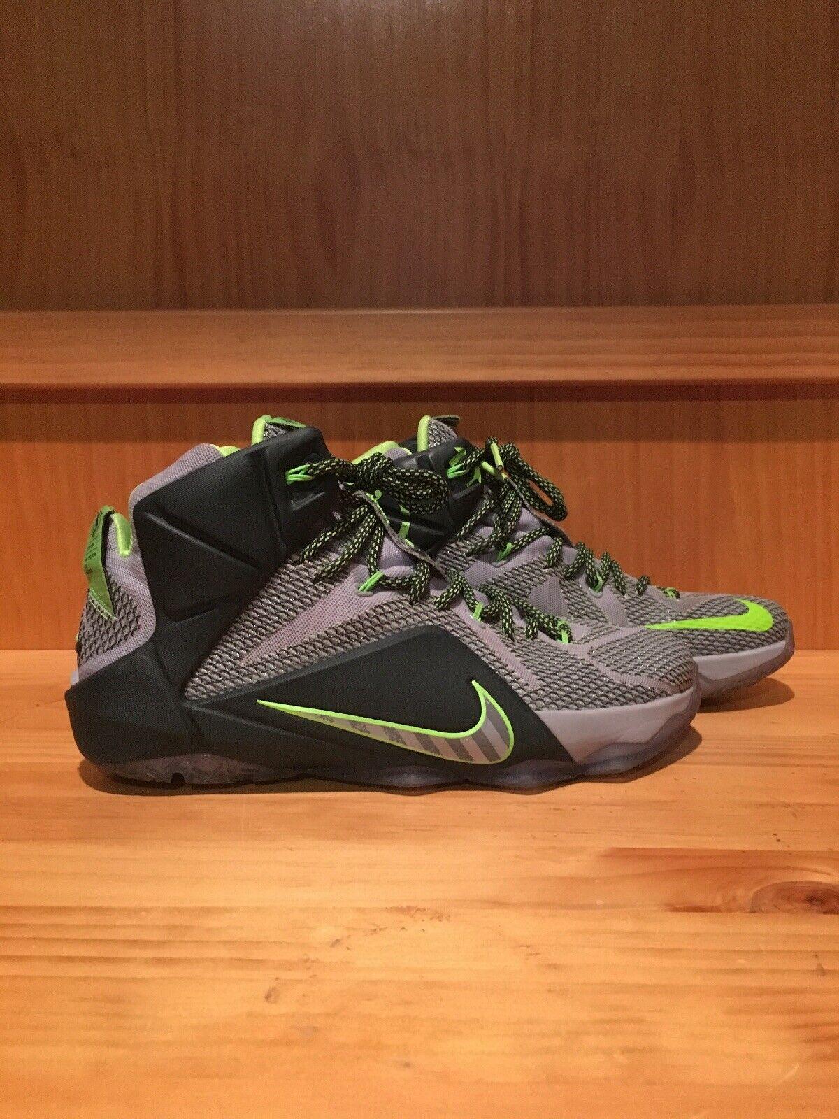 Men's Nike Lebon 12 XII Dunkman Dunk Force Green Grey Size 10