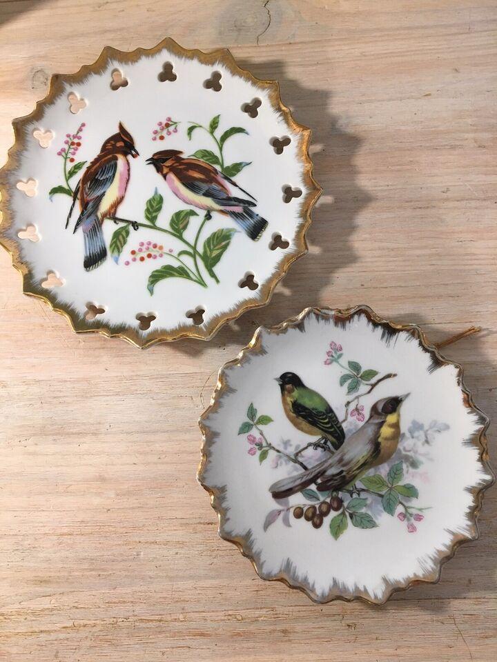 Fugle platter
