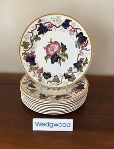 Image is loading Antique-Wedgwood-VINE-Hand-Painted-Dinner-Plates-circa- & Antique Wedgwood VINE Hand-Painted Dinner Plates circa 1897 ~ Set of ...
