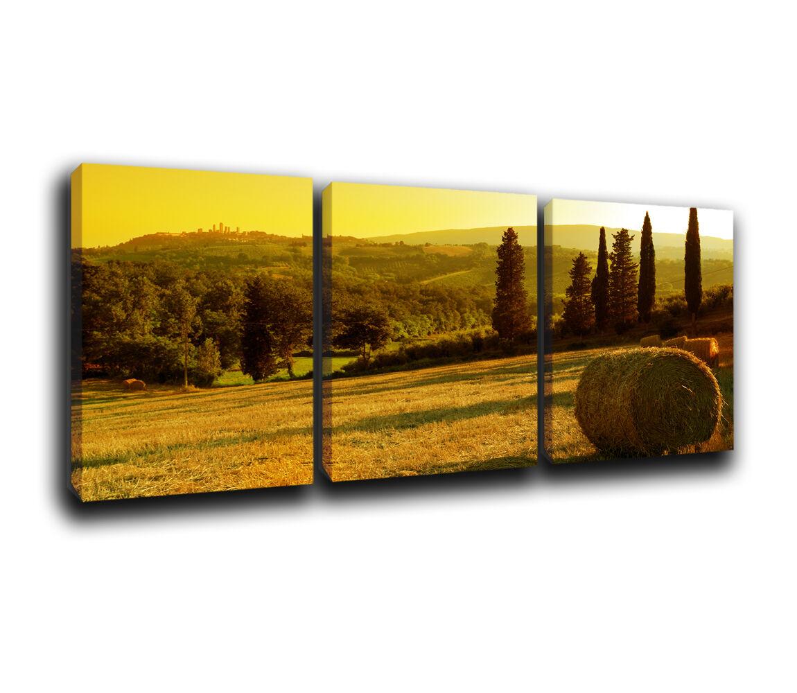 Landscape Canvas Art Print Print Print treble box framed Picture b23463