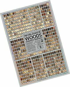 Worldwide Woods Ranked by Hardness 24 x 36 Poster