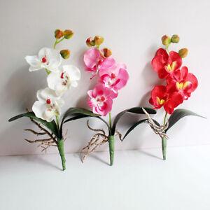 Orchideen Kopf künstliche blumen 3 kopf orchideen phalaenopsis blume hausgarten