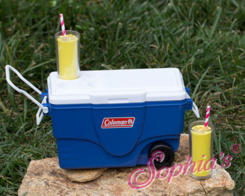 """Doll Clothes 18/"""" Sophia/'s Coleman Cooler Camping Blue Sized For AG Dolls"""