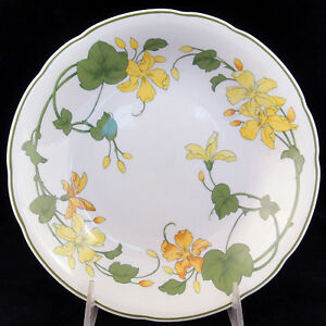 GERANIUM-Villeroy-amp-Boch-SOUP-CEREAL-8-034-diameter-NEW-NEVER-USED-made-in-Germany