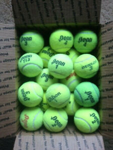 155 INDOOR USED TENNIS BALLS-GIFT FOR YOUR DOG WOW DOGS LUV THEM