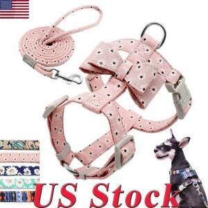 Fashion-Floral-Dog-Strap-Harness-and-Leash-set-Pet-Cat-Vest-Chihuahua-Schnauzer