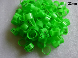 001-100 Numbered Green Chicken Leg Bands 22mm Chicken Rings