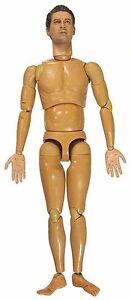 Nude Body Dragon Action Figures 1//6 Scale Albert Weinholt