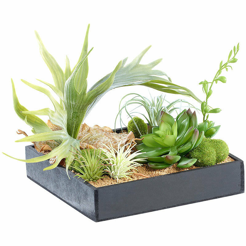 Bild-Pflanzen  Grünikaler Wandgarten Lena mit Deko-Pflanzen, 3er-Set