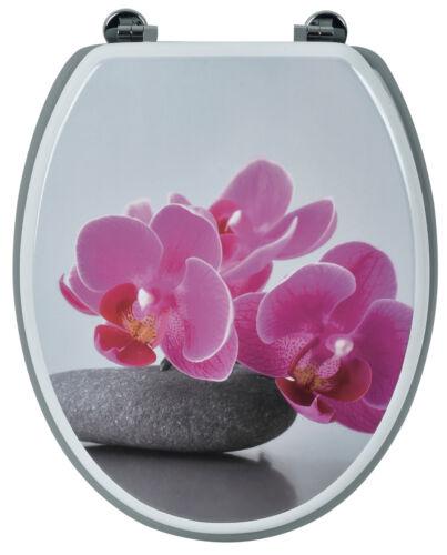 Acrylglasbild Blumenwiese blackpool