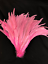 """Decoration 20 pcs 12/""""-14 /"""" 14/""""-16/""""  Rooster Coque Tail Feathers for Crafting"""