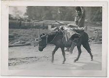 Foto Zigeuner auf Esel 2.WK (U941)
