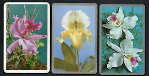 ORCHARDS-X-3-Vintage-Playing-Swap-Cards